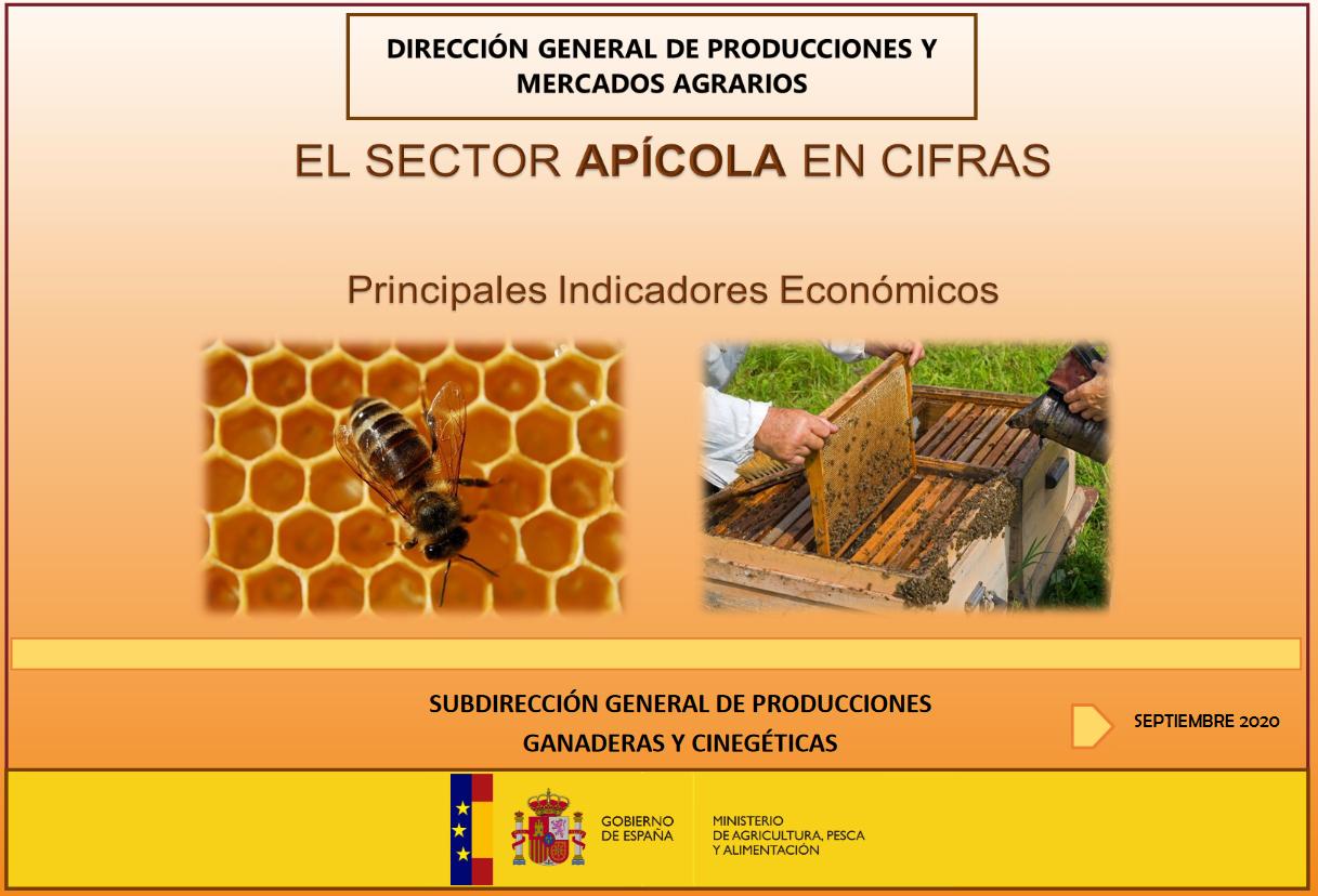 El sector apícola de  Madrid en cifras. Septiembre 2020